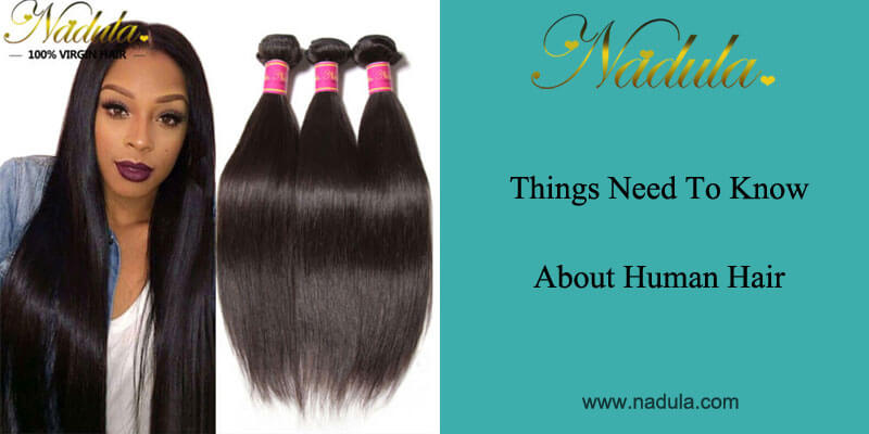 Things need to know about human hair