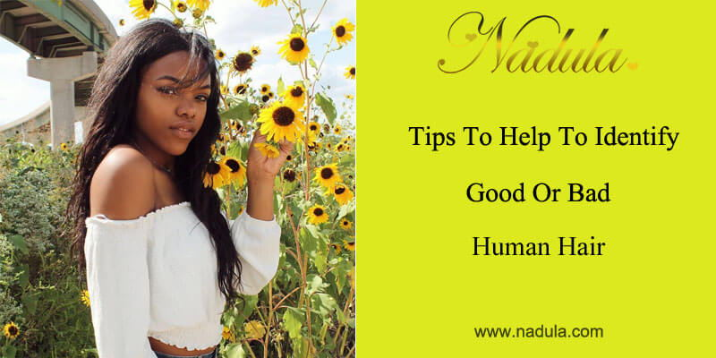 Tips to help to identify good or bad human hair